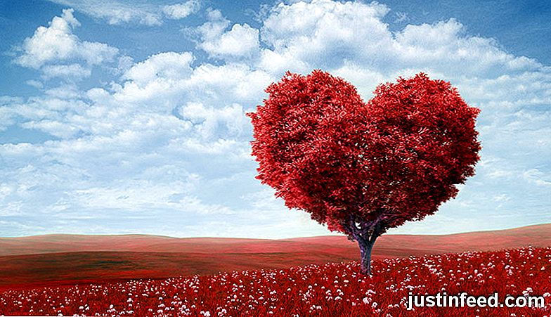 15 Frases Mas Romanticas De Diferentes Idiomas Es Justinfeed Com